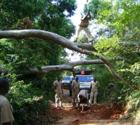 Teams clearing routes in Kivu in 2008