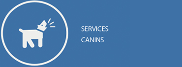 services dog services