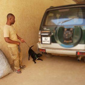 Vehicle Checking